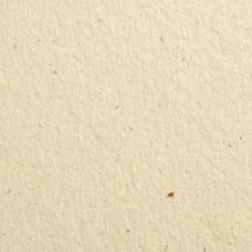 Гладкий картон Flora Avorio 30х30 см, плотность 350 г/м2