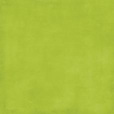 Двусторонняя бумага Green/Yellow 30х30 см от Echo Park