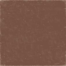 Двусторонняя бумага Green/Brown 30х30 см от Echo Park