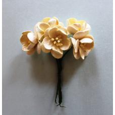Набор  декоративных цветков вишни в кремового цвета  5 шт.