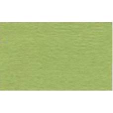 Бумага для пастели Tiziano A4 (21 * 29,7см), №11 verduzzo, 160г / м2, салатовый, среднее зерно, Fabriano