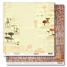 Двусторонняя бумага Справочник Грибника 30,5х30,5 см от ScrapBerry's