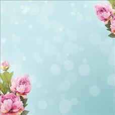 Бумага Pink Peony, размер 30*30, 1 шт от Paper House