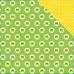 Двусторонняя бумага Frogs 30х30 см от Echo Park