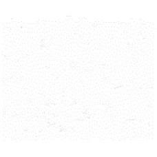 Бумага для дизайна Elle Erre A4, 29 белая, 220 г/м2 от Fabriano
