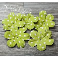 Декоративные бумажные Полевые цветы 50*50мм 5шт цвет зеленый в белый горох 2926 Valeo