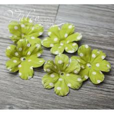 Декоративные бумажные Полевые цветы 40*40мм 5шт цвет зеленый в белый горох 2925 Valeo