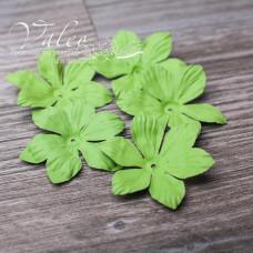 Декоративные бумажные Полевые цветы 40*40мм 5шт цвет зелень 2924 Valeo