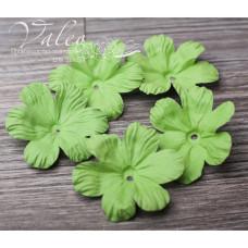 Декоративные бумажные Полевые цветы 50*50мм 5шт цвет зелень 2911 Valeo