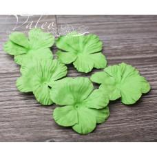 Декоративные бумажные Полевые цветы 50*50мм 5шт цвет зеленый 2910 Valeo