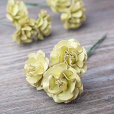 Декоративные бумажные цветы Розы 30мм 3шт цвет фисташковый 2897 Valeo