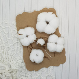 Набор цветов хлопка, 2 - 4.5 см, 5 шт.