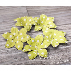Декоративные бумажные Полевые цветы 40*40мм 5шт цвет зеленый в белый горох 2985, Valeo
