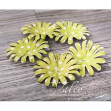 Декоративные бумажные Ромашки 50*50мм 5шт цвет зеленый в белый горох 2986, Valeo