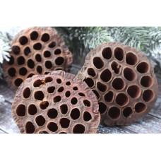 Коробочка лотоса средняя, 5-6 см, натуральная, 1 шт