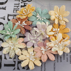 Набор цветов Lucerne - Songbird 12 шт. от Prima