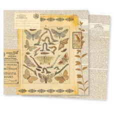 Двусторонняя бумага для скрапбукинга Conservatory: Mesofauna от 7gypsies