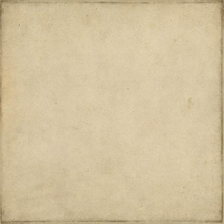 Двусторонняя бумага Distressed Taupe/Brown 30х30 см от Echo Park