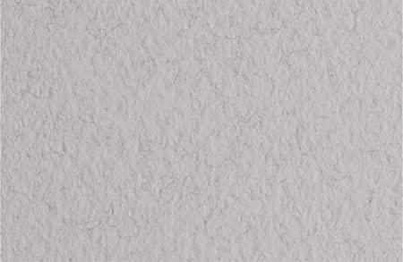 Бумага для пастели Tiziano A4 (21 * 29,7см), №29 nebbia, 160г / м2, серый, среднее зерно, Fabriano
