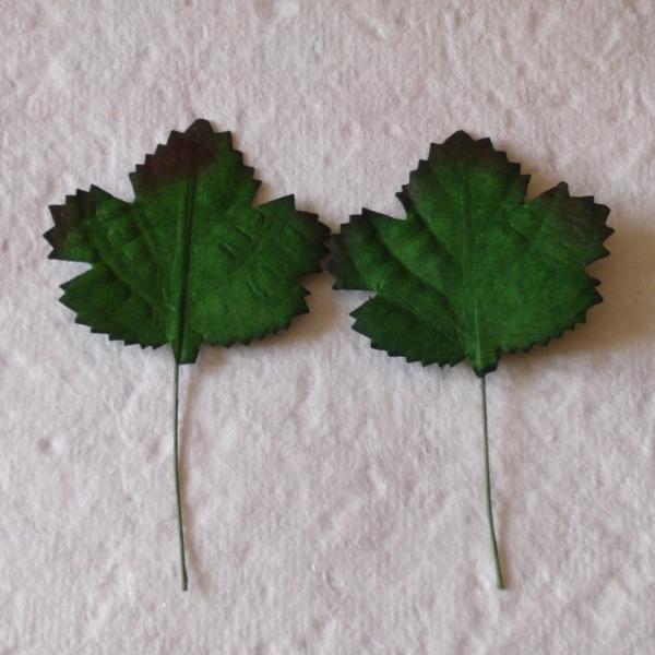 Набор 10 листиков клена зеленого цвета
